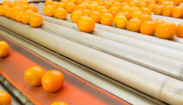CNFA_Agricultural-Market-Development_Banner