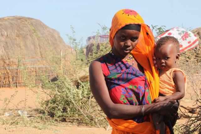 Image - Kenya Drylands Livestock Development Program
