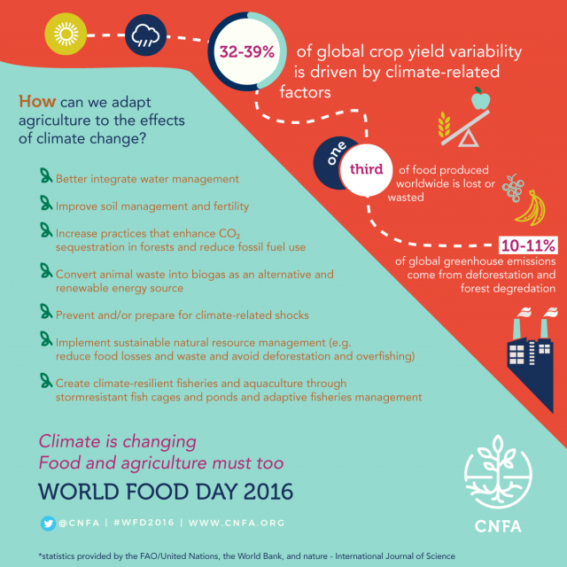 Image - Food for Thought: #WFD2016