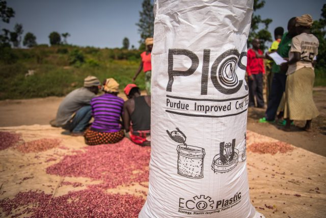 PICS Bag with farmers and high iron beans in the background.