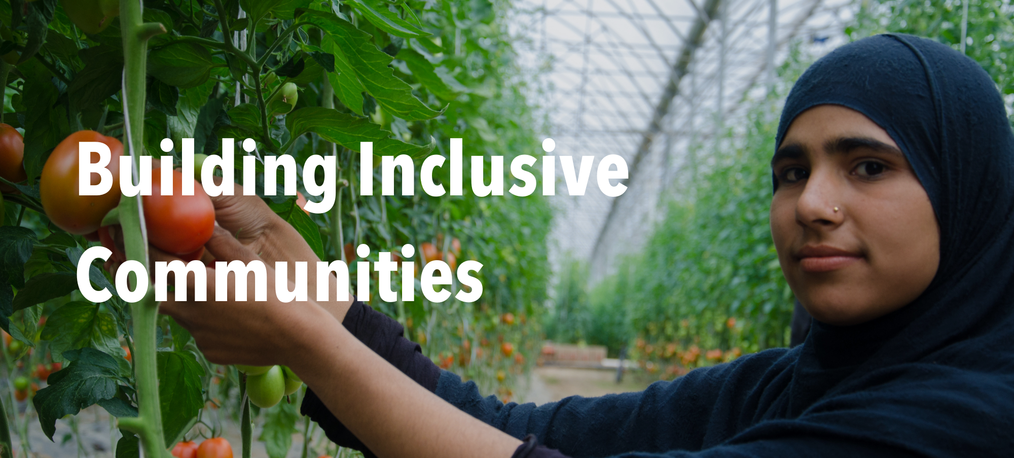 """Woman picking tomato in greenhouse with header text """"Building Inclusive Communities"""""""