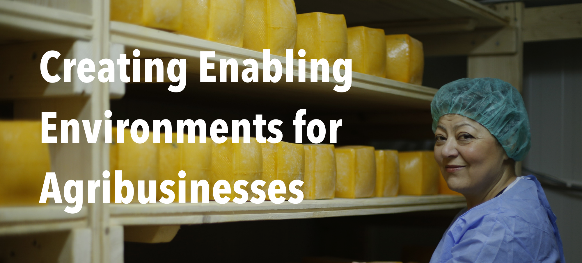 """Woman with packaged goods and header text """"Creating Enabling Environments for Agribusinesses"""""""