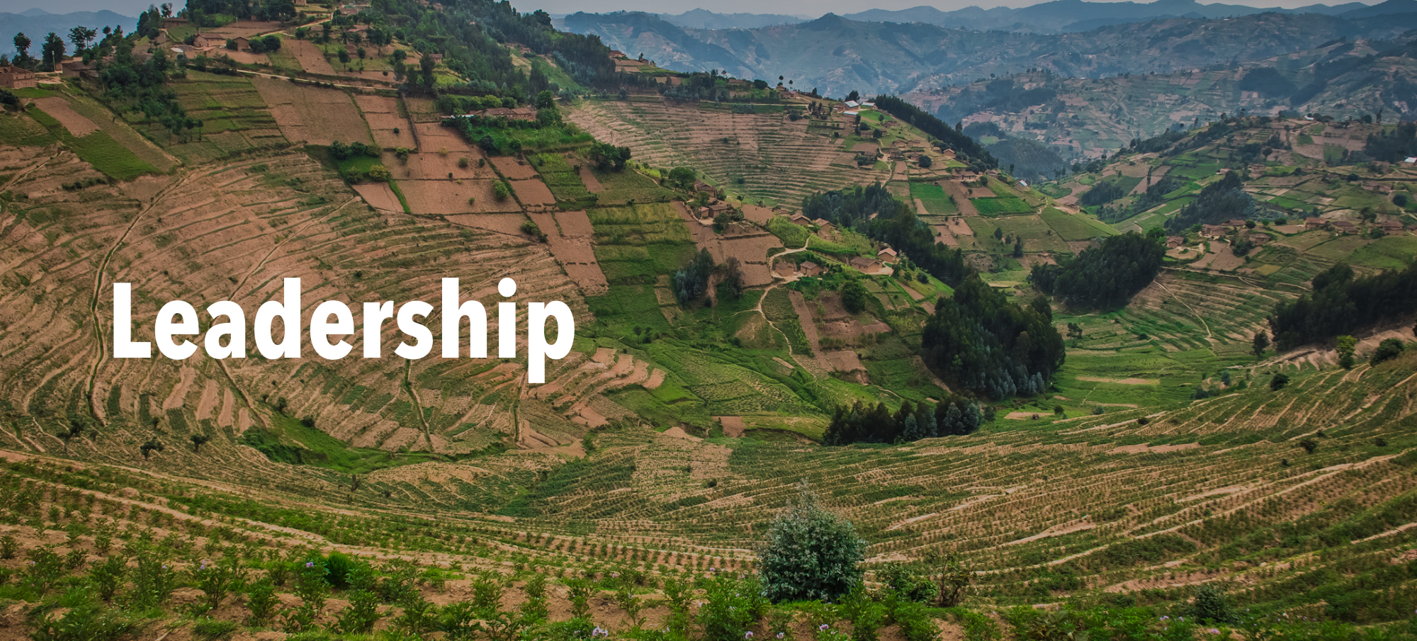 "Terraces on hillside in Rwanda with text ""Leadership"""
